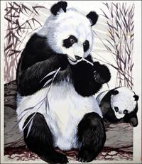 Panda Mother and Cub art by Reginald B Davis
