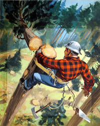 Lumberjack (Original) (Signed) by Angus McBride