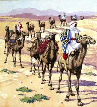 Ship of the Desert art by Patrick Nicolle