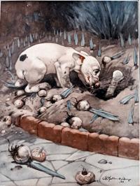 Bonzo the Dog: The Treasure art by George E Studdy
