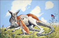 Kangaroo and Baby art by 20th Century unidentified artist