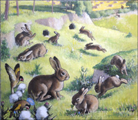 Bouncing Bunnies art by G W Backhouse