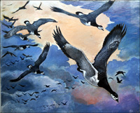 Migrating Geese art by G W Backhouse