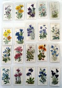 Alpine Flowers  Full set of 50 cards (1913)
