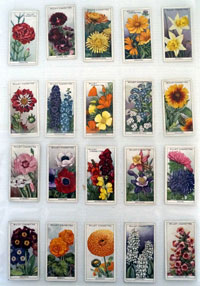 Garden Flowers  Two Full sets of 50 cards, 100 cards total  (1933 & 1939)