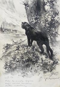 The Prowling Wild Cat art by Giorgio de Gaspari
