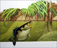 Archer Fish art by Bernard Long