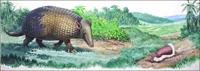 Giant and Fairy Armadillos art by Bernard Long