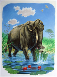 The Elephants Ancestor art by Bernard Long