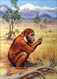 Ramapithecus art by Bernard Long