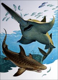 Sawfish and Tiger Shark art by Bernard Long
