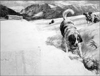 St Bernard's Mountain Rescue art by John Millar Watt