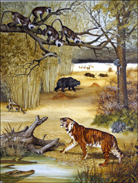 Animals of India art by Arthur Oxenham