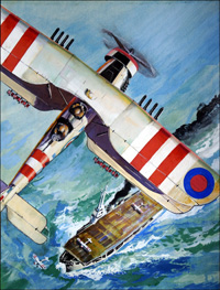 Fairey Swordfish art by Ferdinando Tacconi