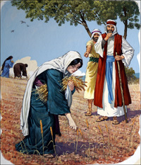 Ruth Gathers Corn in Boaz Field art by Clive Uptton